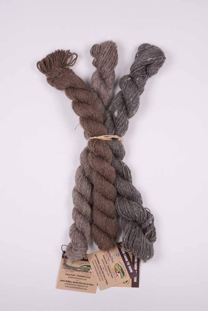 Natural Shetland Wool Skein Neutral (3-pack) - Thistlehill Farm | Twisted Strait Fibers